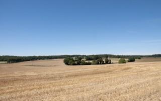 Champs autour de Villegouin