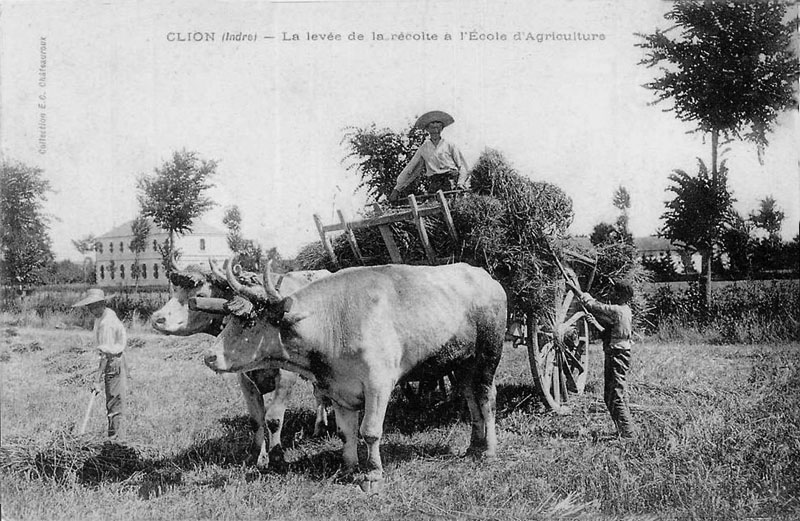 CPA_Clion_EcoleAgriculture