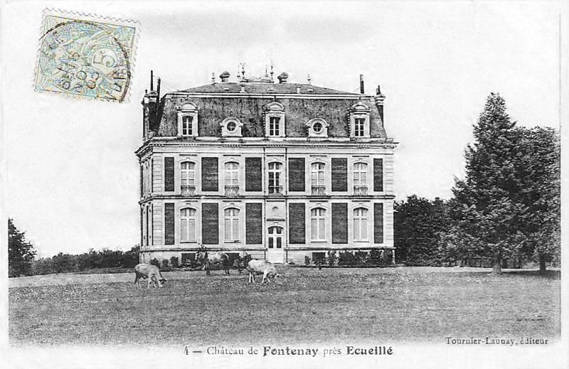CPA_Ecueillé_ChateauFontenay2