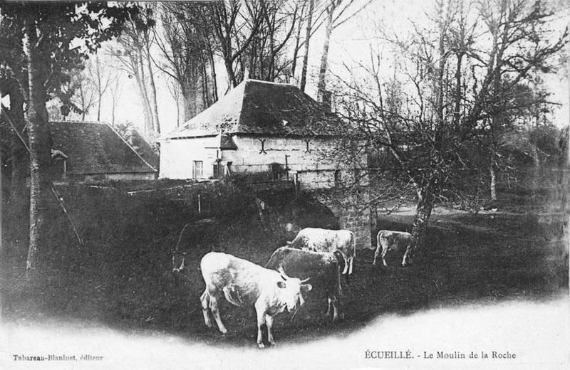CPA_Ecueillé_MoulindelaRoche2