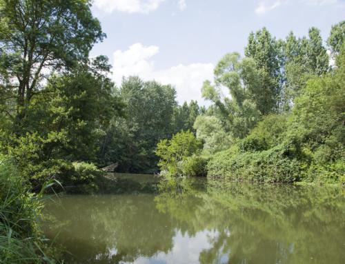 Cartographie des cours d'eau de l'Indre